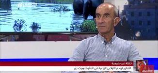 كارثة غير طبيعية؛ الخنازير البريّة تهاجم الأراضي الزراعية -  سلمان أبو ركن - التاسعة - 12-9-2017