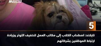 ب 60 ثانية - اصطحاب الكلاب إلى مكاتب العمل لتخفيف التوتر -،3-10-2018- مساواة