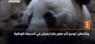 60 ثانية -واشنطن: توديع آخر صغير باندا يعيش في الحديقة الوطنية،19.11.19