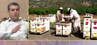مملكة خلية النحل - نصر ادريس - #صباحنا_غير- 19-12-2016- قناة مساواة الفضائية