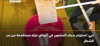 60 ثانية -دبي: استزراع سمك السلمون في أحواض مياه مستقدمة من بحر الشمال،21.11