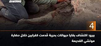 60 ثانية - بيرو: اكتشاف بقايا حيوانات بحرية قٌدمت كقرابين خلال حضارة موتشي القديمة،25.8.2019