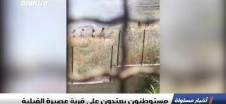 مستوطنون يعتدون على قرية عصيرة القبلية،اخبار مساواة 17.5.2019، قناة مساواة