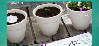 حول أخبار اليوم الى نبتة خضراء ! - فقرة TIPS & TRICKS - برنامج #USB - حلقة 11-4-2017 - قناة مساواة