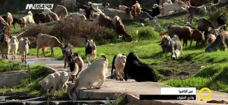 وادي الملوك - عين الكاميرا - صباحنا غير- 19.11.2017 -  قناة مساواة الفضائية
