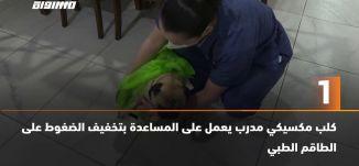 َ60 ثانية - كلب مكسيكي مدرب يعمل على المساعدة بتخفيف الضغوط على الطاقم الطبي،18.05.20