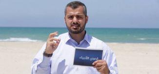 يونس عليه السلام - جودة عالية - #قصص_الأنبياء - قناة مساواة الفضائية - Musawa Channel