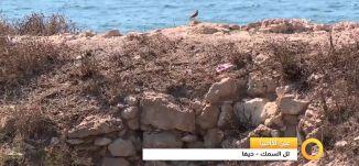 Musawachannel   تل السمك   حيفا   23 10 2015   قناة مساواة الفضائية  عين الكاميرا   Musawa Channel
