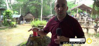 تقرير- على ظهر فيل ، جولة عائلية في الأدغال - وائل عواد -  صباحنا غير- 26-4-2017 - مساواة