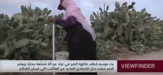 بدء موسم قطف فاكهة الصبر في غزة ،عبر الة مصنعة محليا -view finder -06.08.2019
