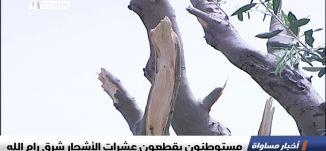 مستوطنون يقطعون عشرات الأشجار شرق رام الله،اخبار مساواة،18.1.2019، مساواة