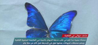 السعوديات يتطلعن لقيادة الطائرات،view finder -18.7.2018- مساواة