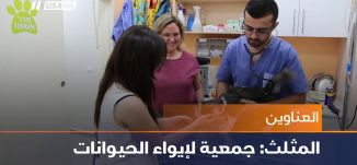 تحالف عربي باللد للانتخابات،اخبار مساواة،14.9.2018،مساواة