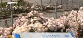 الحصار والكورونا يضايق مزارعين الزهور في قطاع غزة،الكاملة،جولة رمضانية،الحلقة8