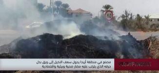 مصنع في منطقة اريحا يحول سعف النخيل الى ورق بدل حرقه -view finder -10.10