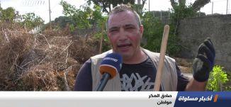 يافا: حملة تنظيف مقبرة الشيخ مراد، تقرير،اخبار مساواة،21.10.2019،قناة مساواة
