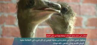 قصّاب في مصر يصنع كريمات مرطبة وزيتآ من دهن النعام - view finder- 12-3-2018 ، مساواة