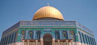 المحبة والسلام مقدسان وقادمان إلى المدينة - قناة مساواة الفضائية