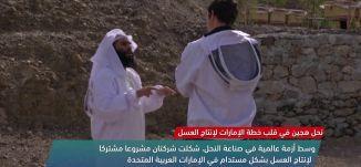 نحل هجين في قلب خطة الإمارات لإنتاج العسل  -view finder-12-2-2018 - قناة مساواة