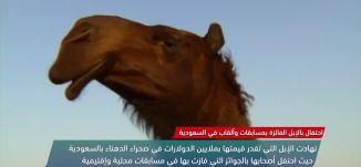احتفال بالإبل الفائزة بمسابقات وألقاب في السعودية - view finder-21-3-2018 ،  قناة مساواة الفضائية
