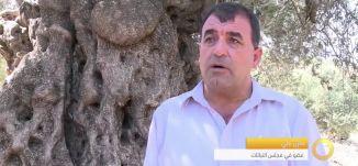 تقرير - الزراعة في دير حنا - أهمية الحفاظ على قيمة الأرض - #صباحنا_غير- 4-8-2016- مساواة