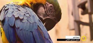 """تقرير - جمعية تشرين.. معرض"""" احنا هين"""" الثقافي، ازدهار ابو ليل ،صباحنا غير،  14.1.2018"""