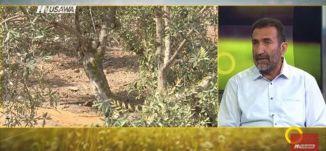 موسم قطف الزيتون على الأبواب - حسين خطيب - صباحنا غير  -4.10.2017 - قناة مساواة الفضائية