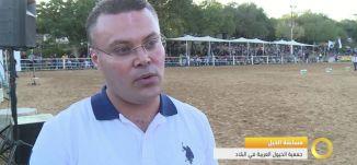 تقرير - مسابقة الخيل العربي الجمالية - جمعية الخيول العربية في البلاد - #صباحنا_غير- 14-10-2016