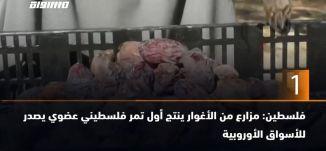 60 ثانية -فلسطين: مزارع من الأغوار ينتج أول تمر فلسطيني عضوي يصدر للأسواق الأوروبية ،06.11